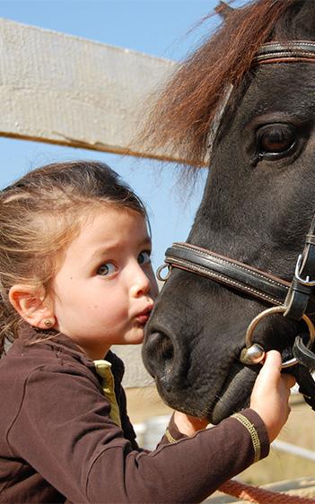 Bildausschnitt von Mädchen küsst Pony auf die Nüstern