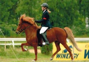 Pferd und Reiter während einer Gangpferdeprüfung – Horsia Ratgeber