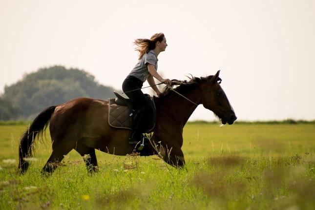 3 bekannte Reitweisen und ihre Besonderheiten – Horsia Ratgeber