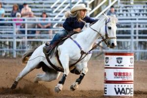 Pferd und Reiter auf einem Westernreitturnier – Horsia Ratgeber