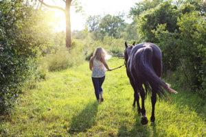 Gemütliches Arbeiten mit dem Pferd im Sommer am Abend oder am Morgen – Horsia Ratgeber